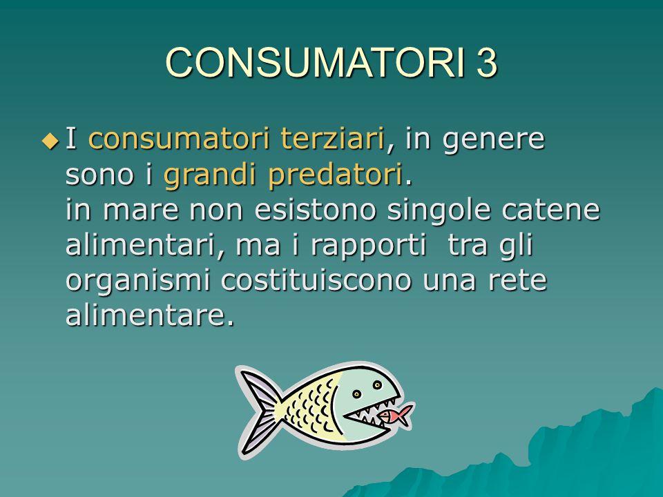 CONSUMATORI 3