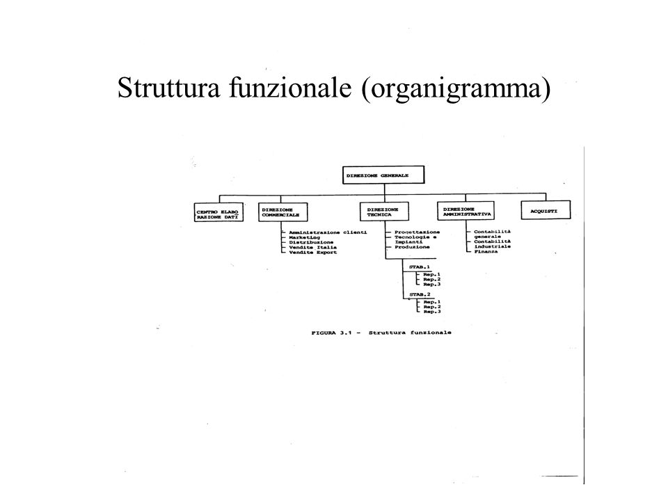 Struttura funzionale (organigramma)