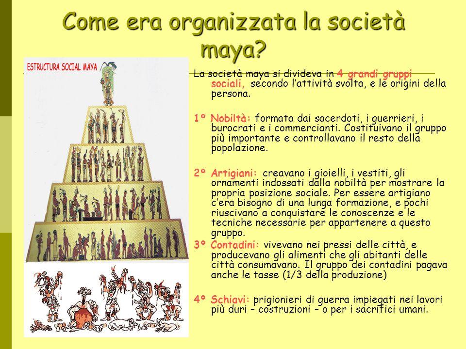 Come era organizzata la società maya