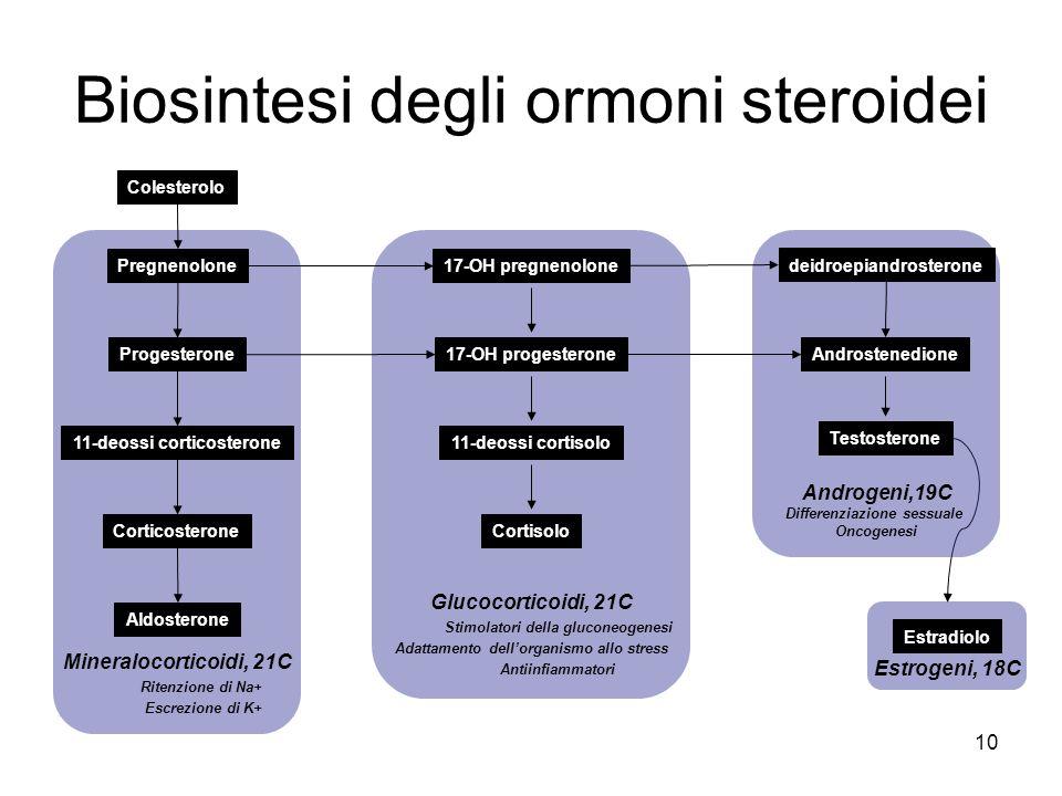 Biosintesi degli ormoni steroidei