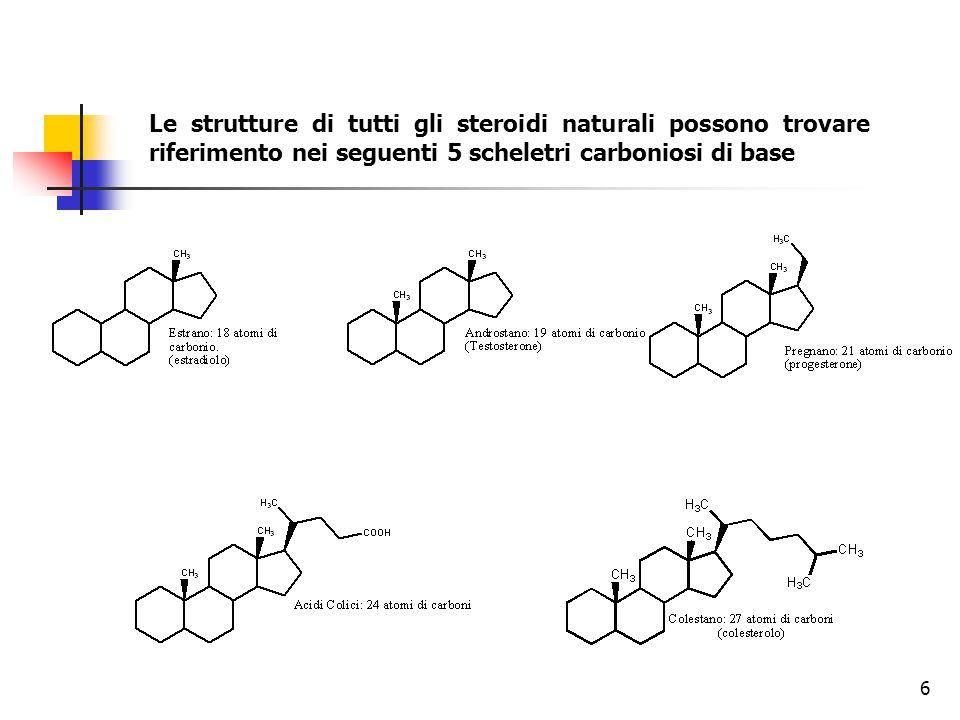 Le strutture di tutti gli steroidi naturali possono trovare riferimento nei seguenti 5 scheletri carboniosi di base