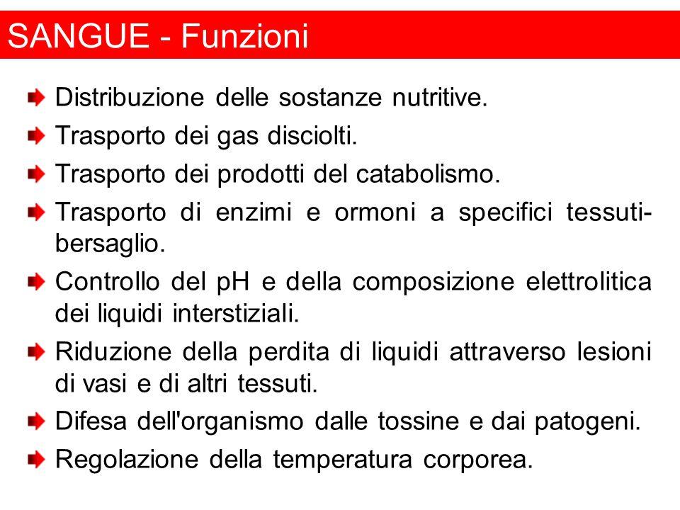 SANGUE - Funzioni Distribuzione delle sostanze nutritive.