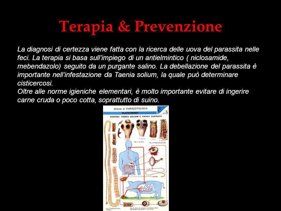 Terapia & Prevenzione