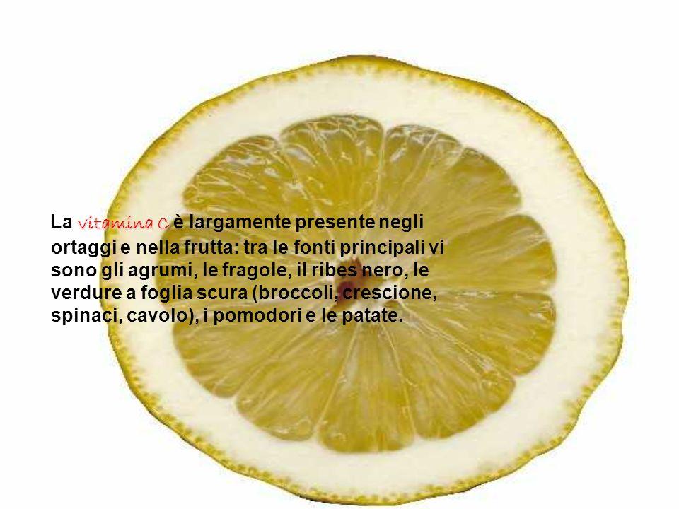 La vitamina C è largamente presente negli ortaggi e nella frutta: tra le fonti principali vi sono gli agrumi, le fragole, il ribes nero, le verdure a foglia scura (broccoli, crescione, spinaci, cavolo), i pomodori e le patate.