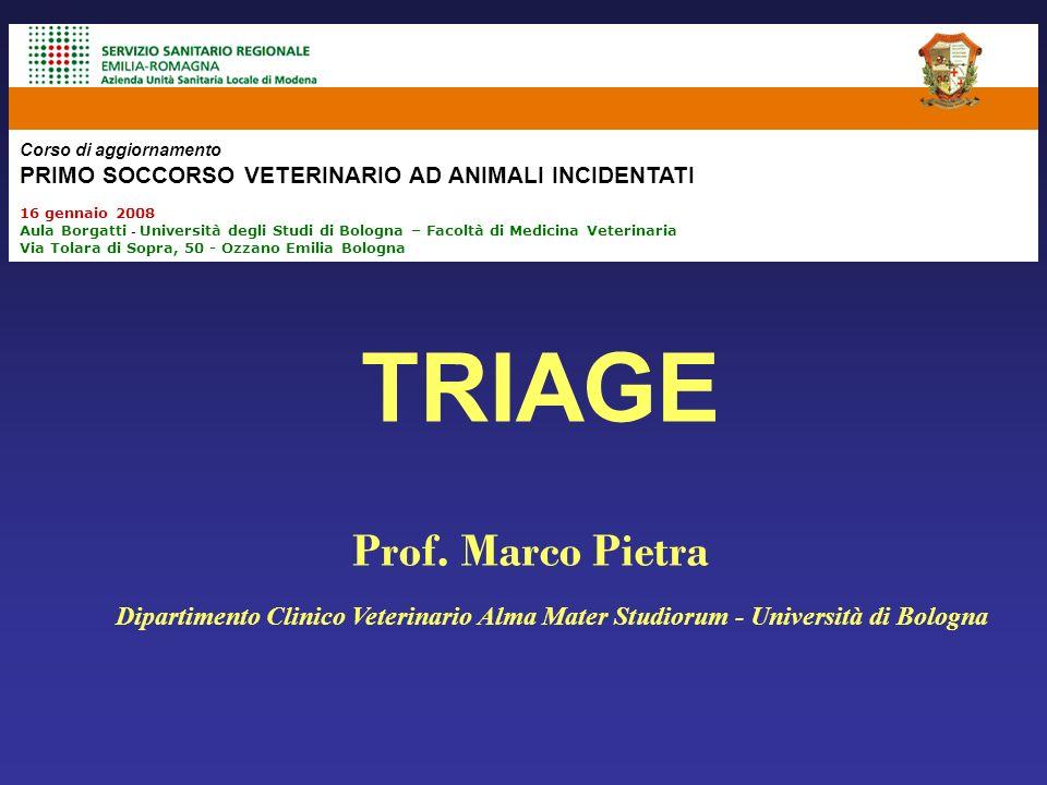 TRIAGE Prof. Marco Pietra