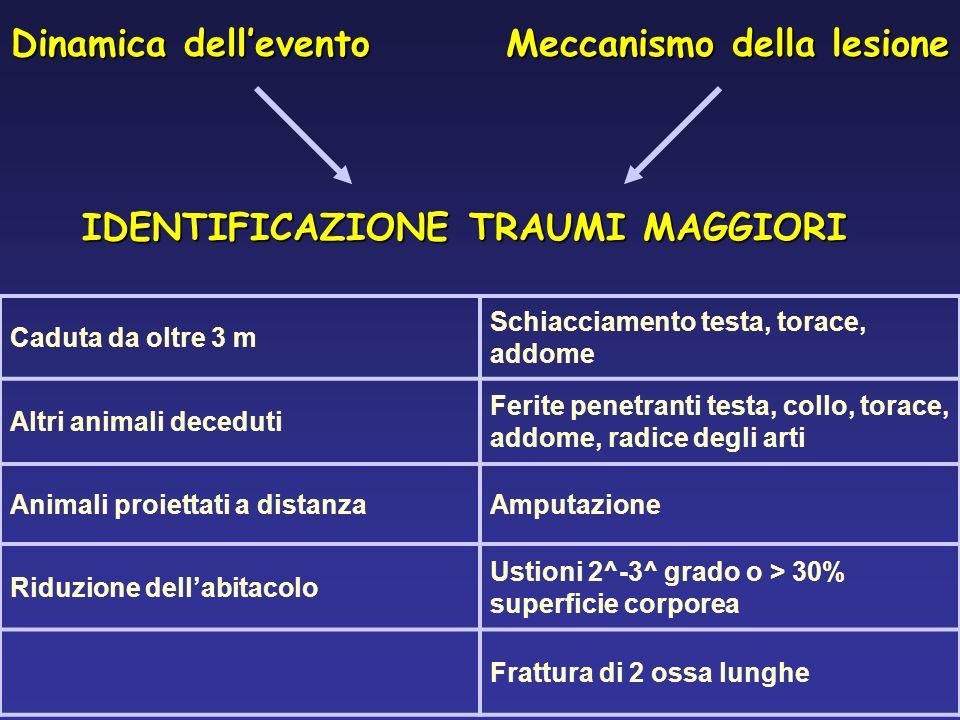 Meccanismo della lesione IDENTIFICAZIONE TRAUMI MAGGIORI