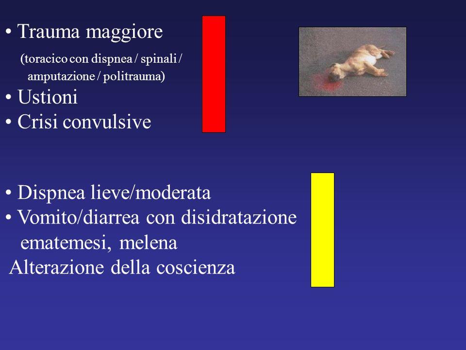 (toracico con dispnea / spinali / Ustioni Crisi convulsive