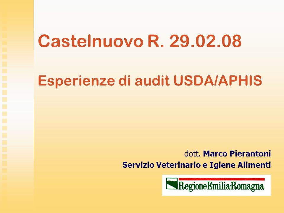 Castelnuovo R. 29.02.08 Esperienze di audit USDA/APHIS