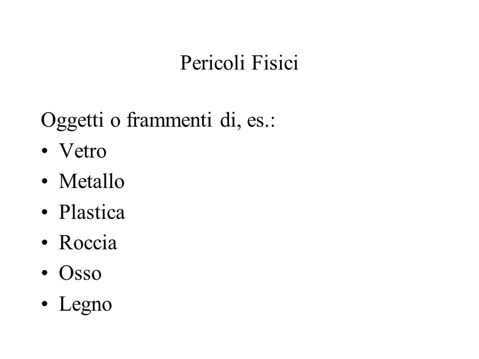 Pericoli Fisici Oggetti o frammenti di, es.: Vetro Metallo Plastica Roccia Osso Legno