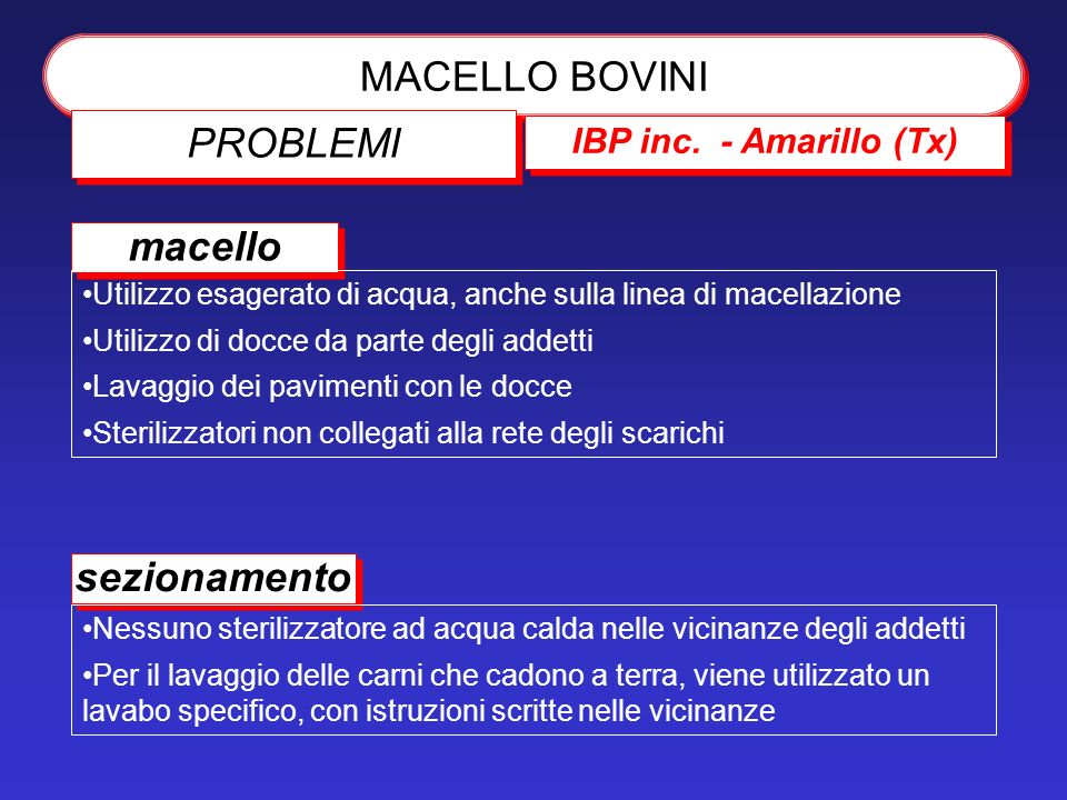 MACELLO BOVINI PROBLEMI macello sezionamento IBP inc. - Amarillo (Tx)