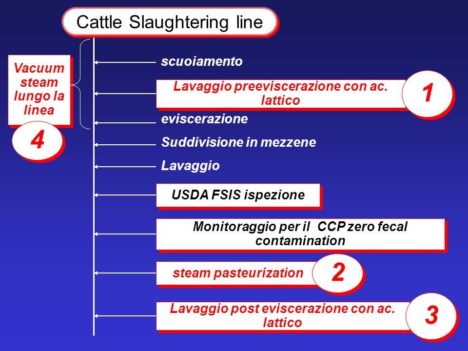 1 4 2 3 Cattle Slaughtering line scuoiamento