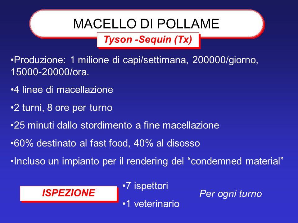 MACELLO DI POLLAME Tyson -Sequin (Tx)