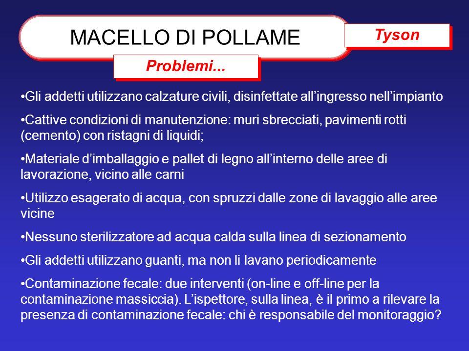 MACELLO DI POLLAME Tyson Problemi...