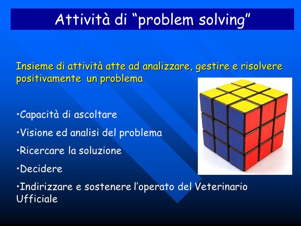 Attività di problem solving