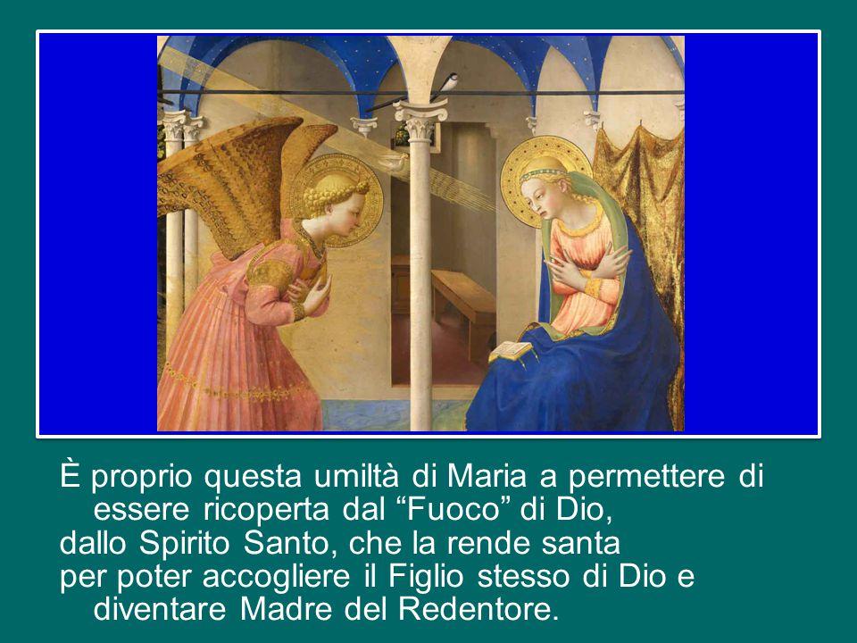 È proprio questa umiltà di Maria a permettere di essere ricoperta dal Fuoco di Dio, dallo Spirito Santo, che la rende santa per poter accogliere il Figlio stesso di Dio e diventare Madre del Redentore.