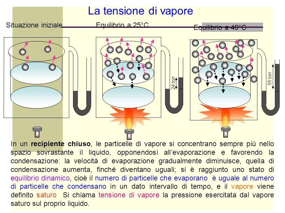 La tensione di vapore Situazione iniziale Equilibrio a 25°C