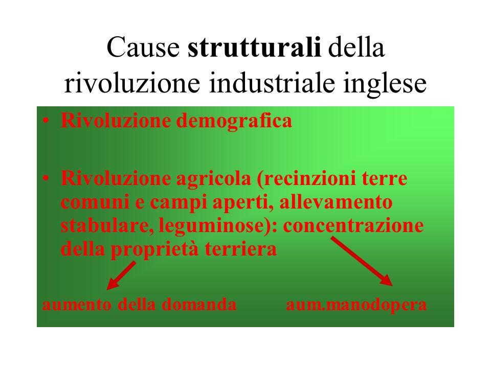 Cause strutturali della rivoluzione industriale inglese