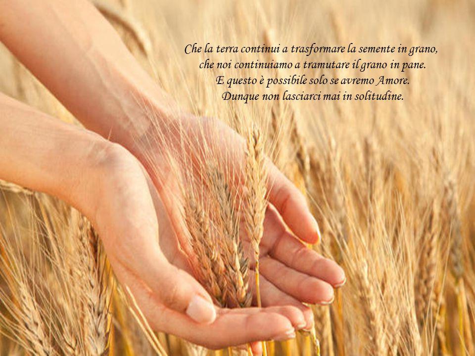 Che la terra continui a trasformare la semente in grano,