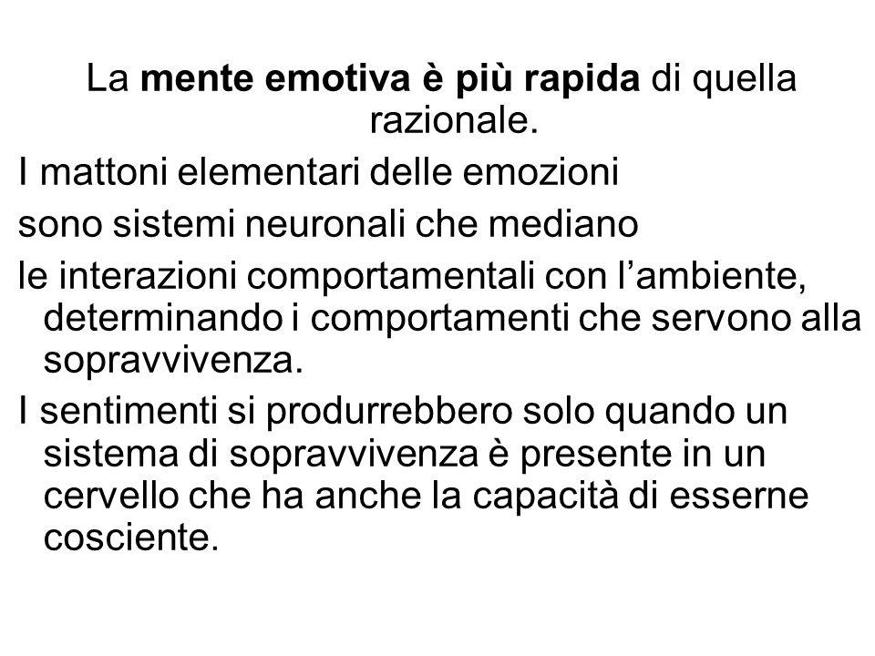 La mente emotiva è più rapida di quella razionale.