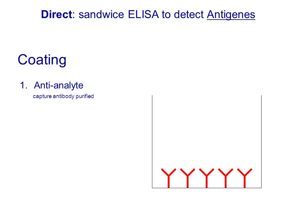 Direct: sandwice ELISA to detect Antigenes
