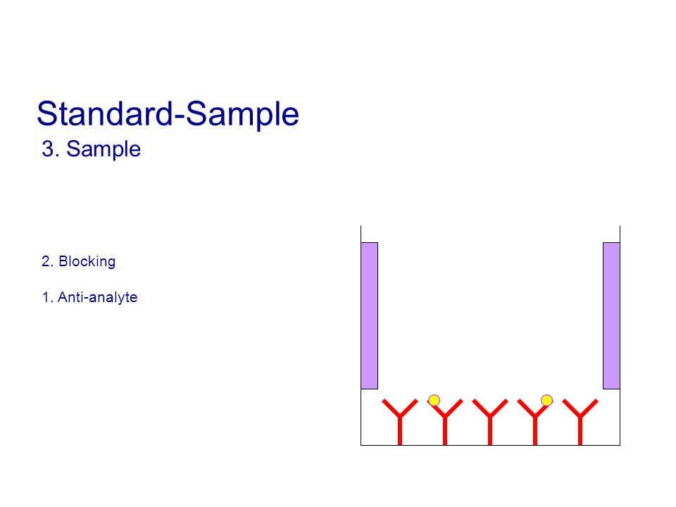 Standard-Sample 3. Sample 2. Blocking 1. Anti-analyte 13