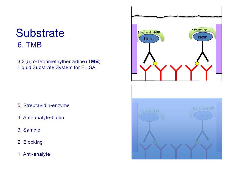 Substrate 6. TMB 3,3′,5,5′-Tetramethylbenzidine (TMB)