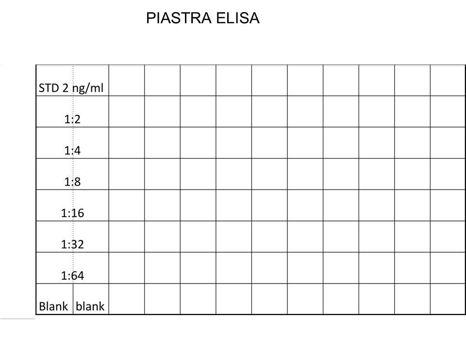 PIASTRA ELISA 1:2 1:2 1:2 1:2 1:2 1:2