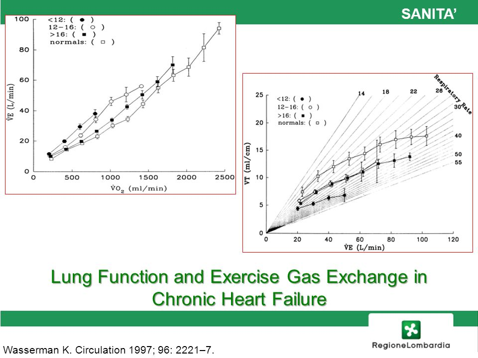 Lung Function and Exercise Gas Exchange in
