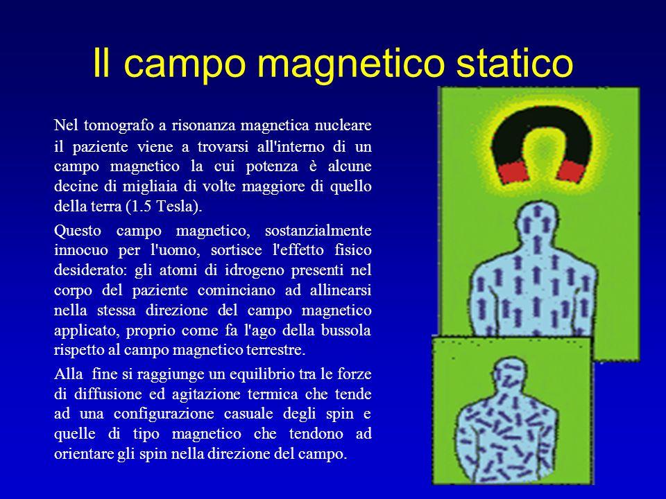 Il campo magnetico statico
