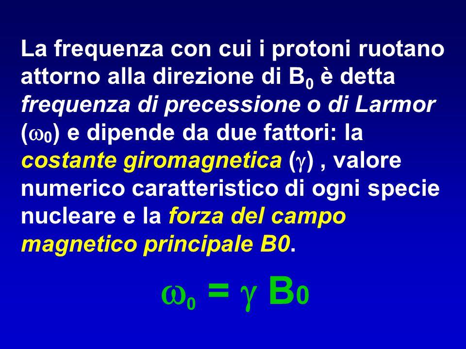 La frequenza con cui i protoni ruotano attorno alla direzione di B0 è detta frequenza di precessione o di Larmor (0) e dipende da due fattori: la costante giromagnetica () , valore numerico caratteristico di ogni specie nucleare e la forza del campo magnetico principale B0.
