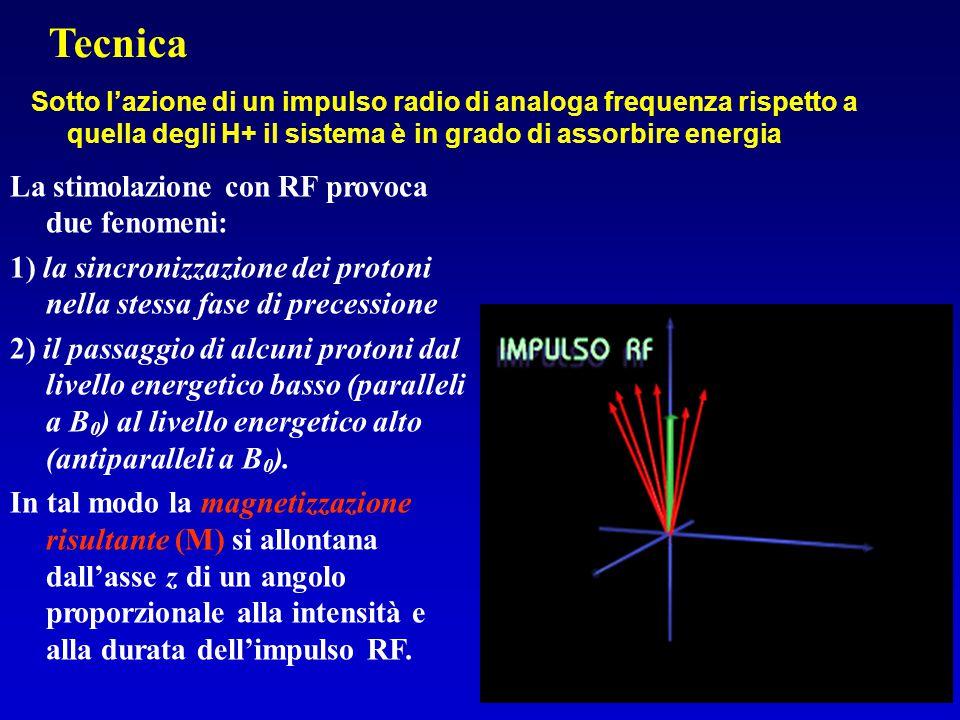 Tecnica La stimolazione con RF provoca due fenomeni:
