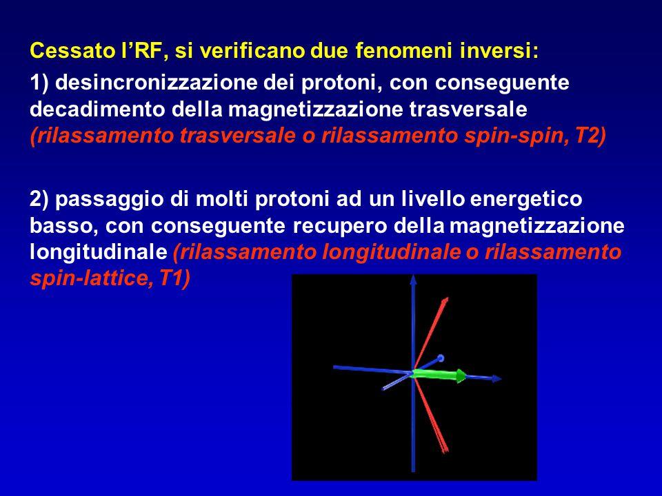 Cessato l'RF, si verificano due fenomeni inversi: