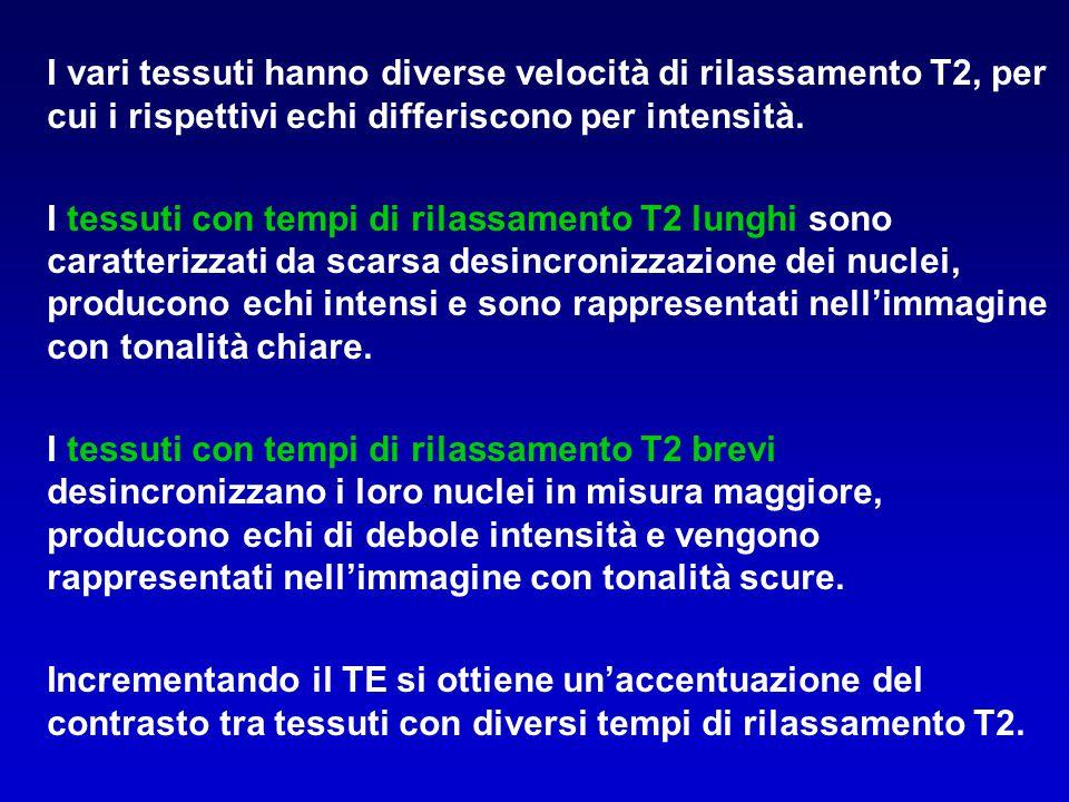 I vari tessuti hanno diverse velocità di rilassamento T2, per cui i rispettivi echi differiscono per intensità.