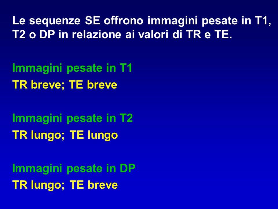 Le sequenze SE offrono immagini pesate in T1, T2 o DP in relazione ai valori di TR e TE.