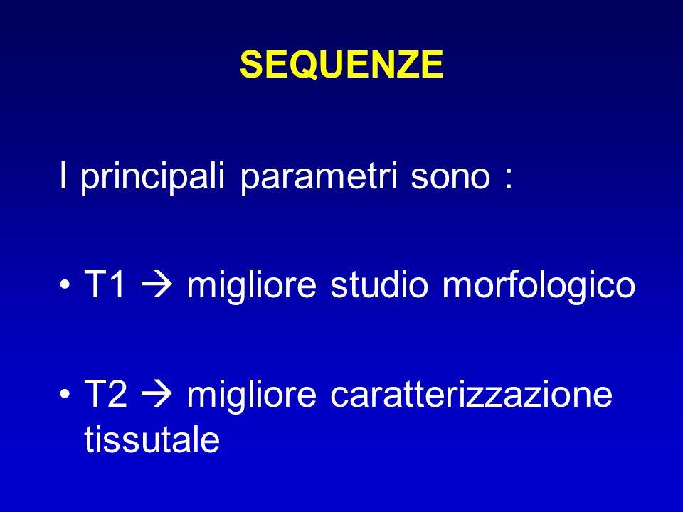 SEQUENZE I principali parametri sono : T1  migliore studio morfologico.