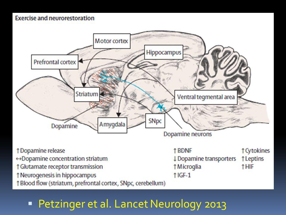 Petzinger et al. Lancet Neurology 2013