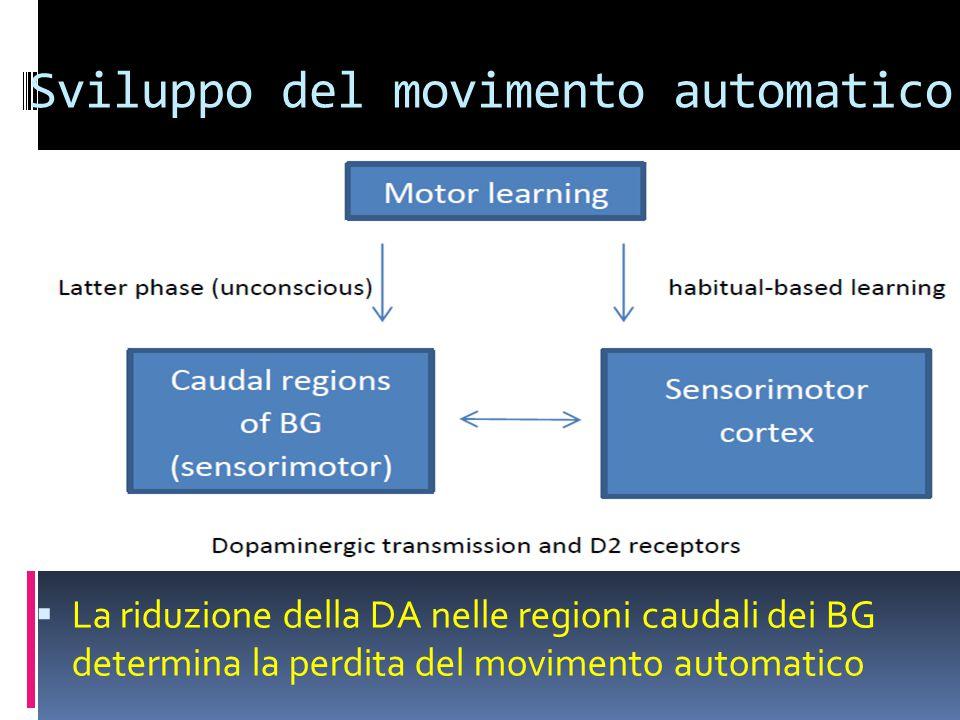 Sviluppo del movimento automatico