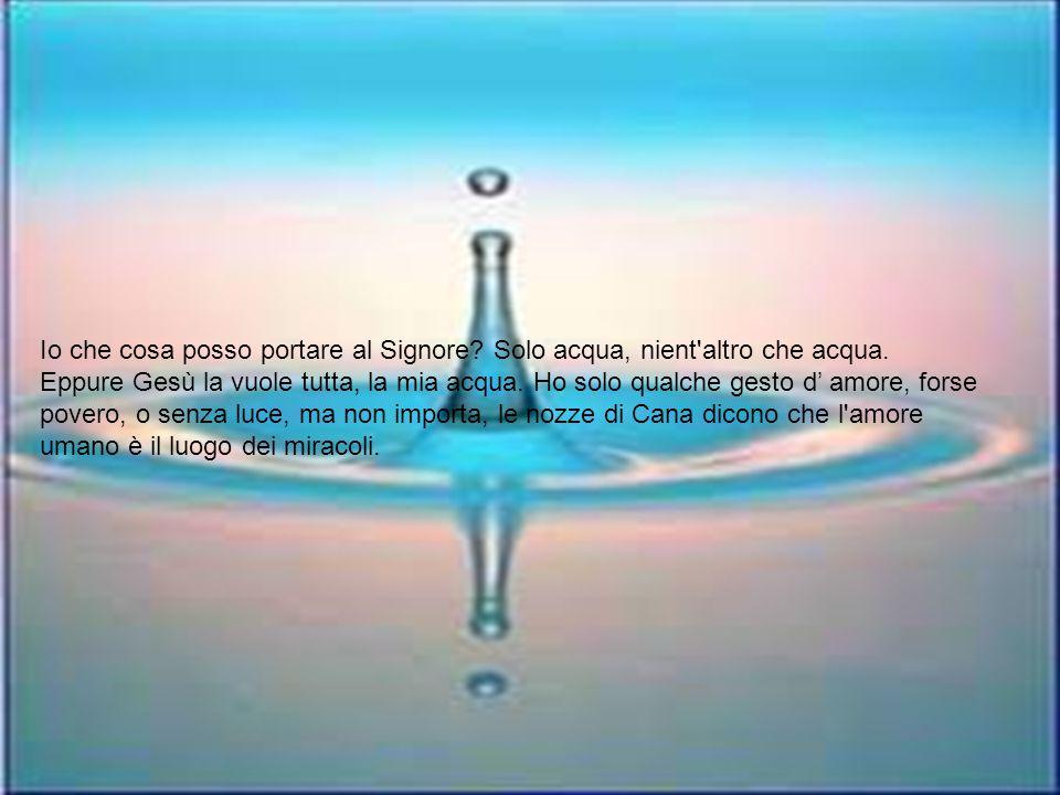 Io che cosa posso portare al Signore. Solo acqua, nient altro che acqua.