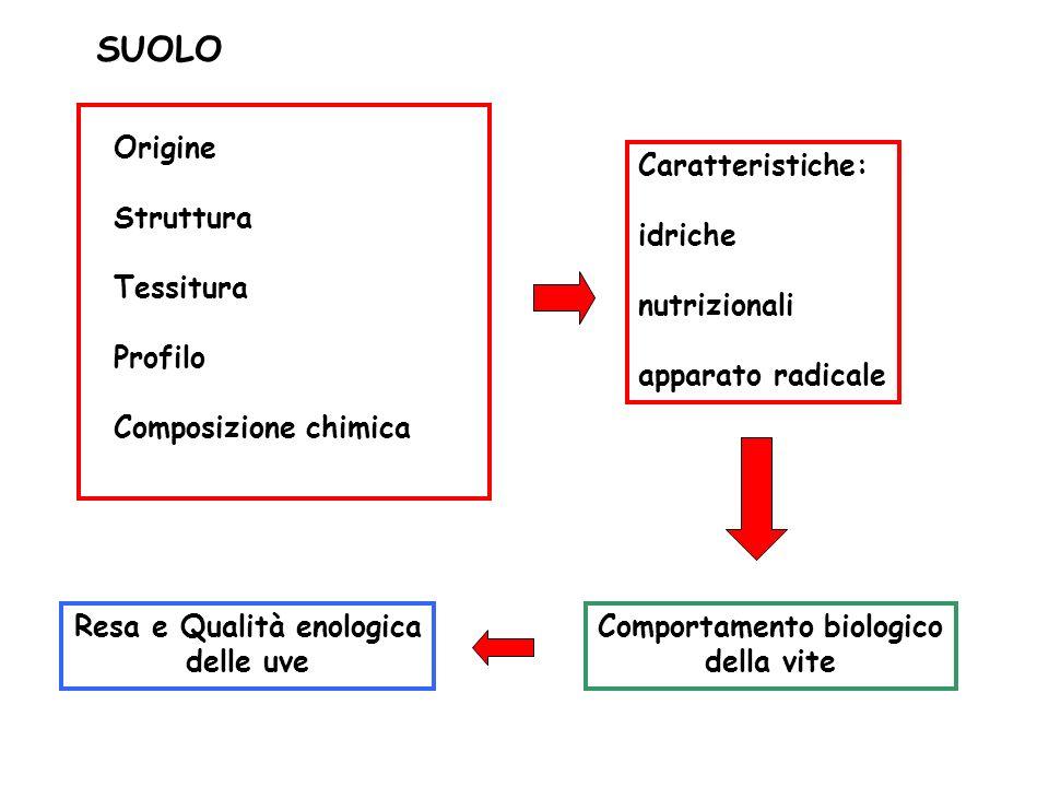 Resa e Qualità enologica delle uve Comportamento biologico