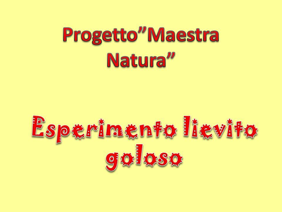 Progetto Maestra Natura Esperimento lievito goloso