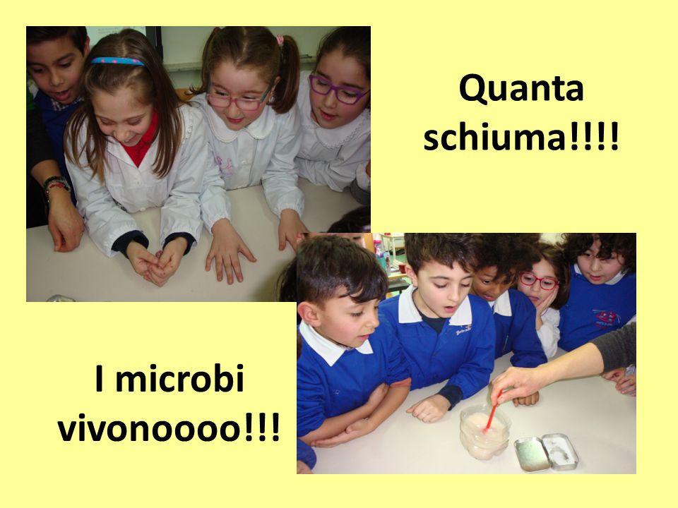 Quanta schiuma!!!! I microbi vivonoooo!!!
