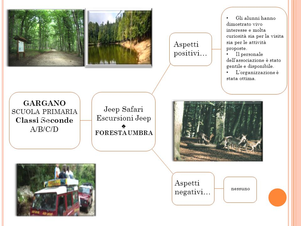 Jeep Safari Escursioni Jeep
