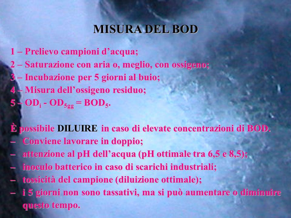 MISURA DEL BOD 1 – Prelievo campioni d'acqua;