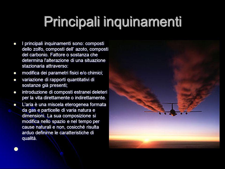 Principali inquinamenti