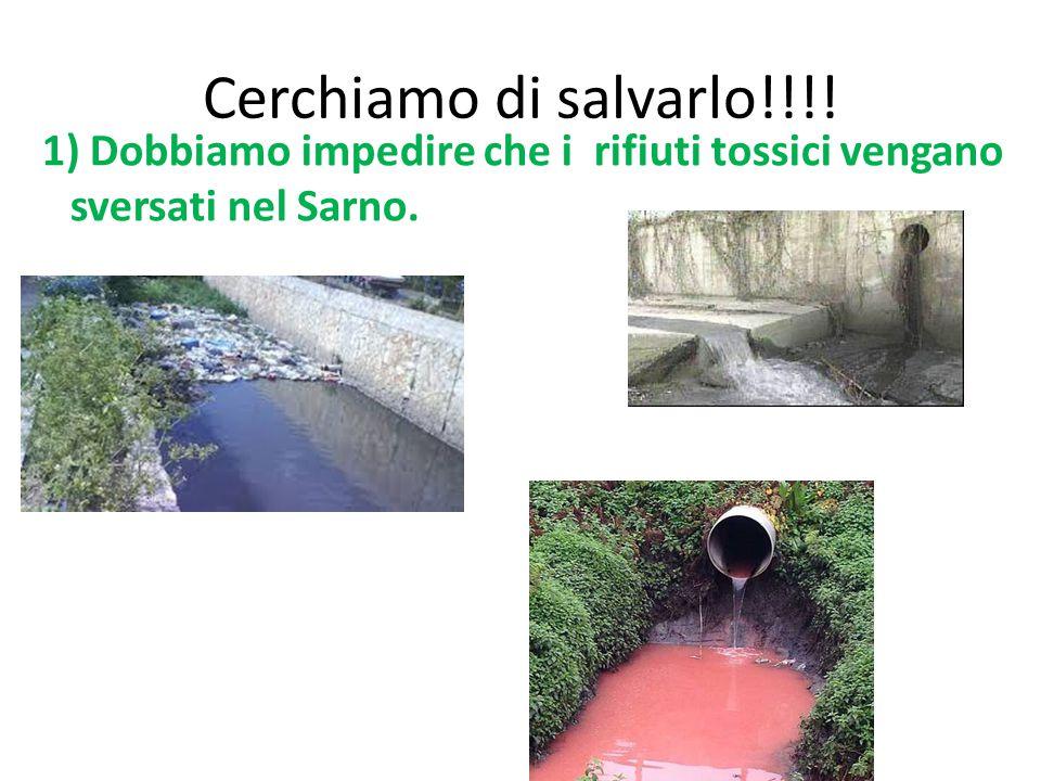 Cerchiamo di salvarlo!!!! 1) Dobbiamo impedire che i rifiuti tossici vengano sversati nel Sarno.