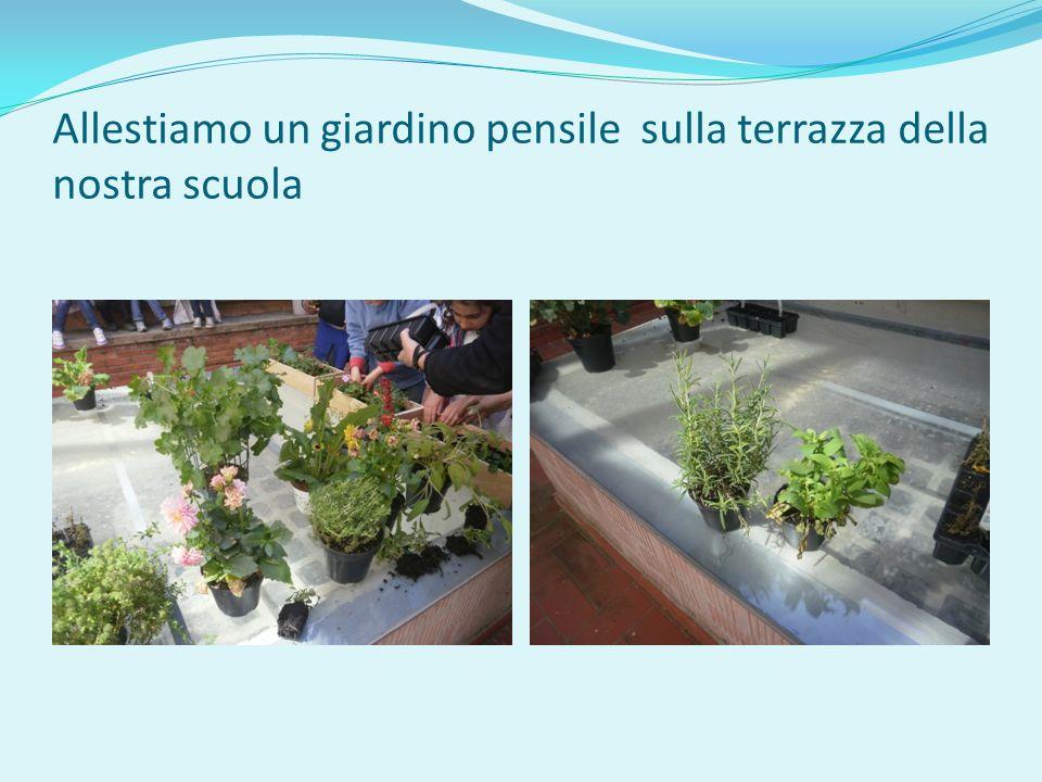 Allestiamo un giardino pensile sulla terrazza della nostra scuola