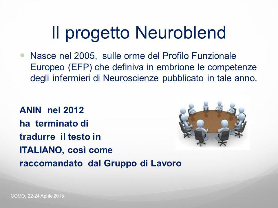 Il progetto Neuroblend