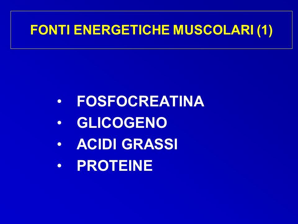 FONTI ENERGETICHE MUSCOLARI (1)