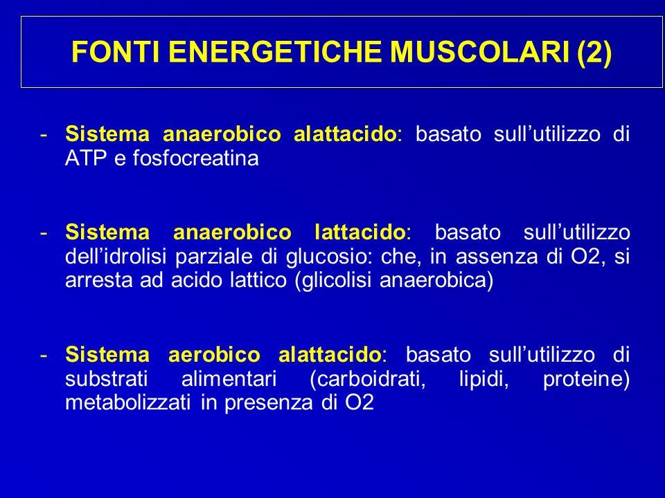 FONTI ENERGETICHE MUSCOLARI (2)