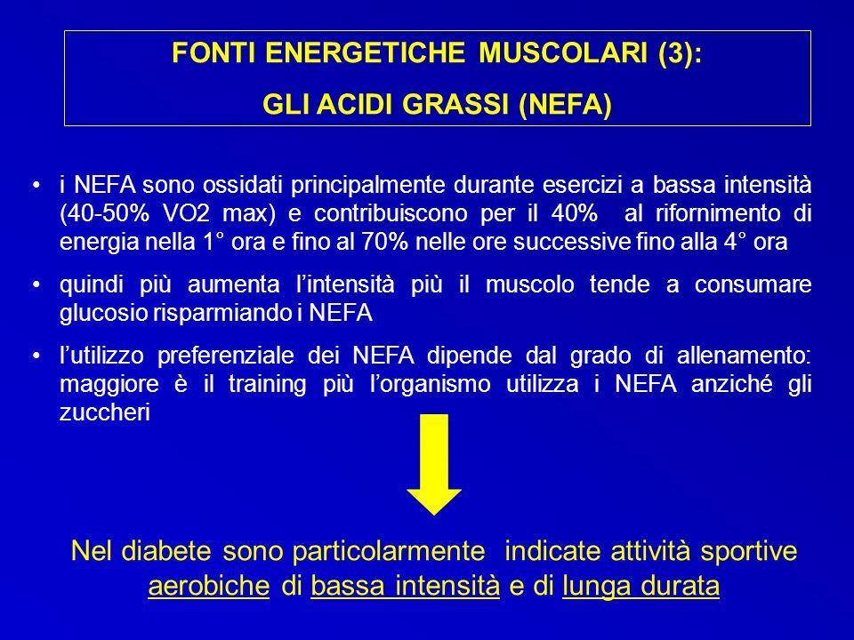 FONTI ENERGETICHE MUSCOLARI (3): GLI ACIDI GRASSI (NEFA)